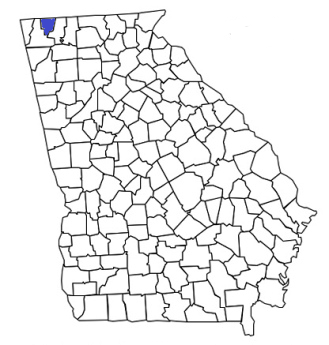 georgia fire, georgia firefighters, ga firefighters, ga fire, georgia fire department, catoosa county, catoosa county ems, catoosa county fire apparatus, catoosa county fire departments